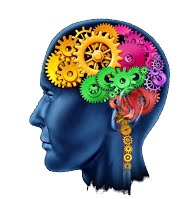 The Cognitive Brain